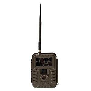 Covert Wireless Trail Camera