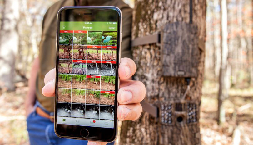 Best Cellular trail cameras