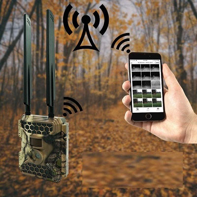 Best Wireless Trail Cameras