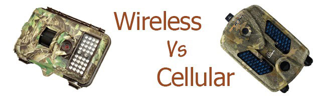 Wireless vs. Cellular Trail Camera